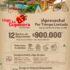 Cuponera On Vacation: 12 noches de alojamiento por $900.000